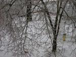 ice-storm-2009-0031