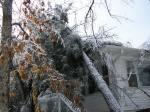 ice-storm-2009-009